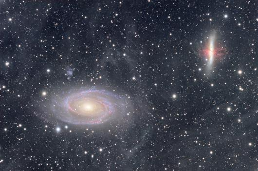M81/82 in the IFN